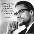 فاتحه برای شهید آمریکایی /سید مصطفی میر احمدی
