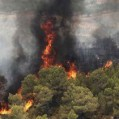 مهار كامل آتش در جنگلهای گلورد