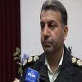سرهنگ خورشیدی :از افزایش دو برابری کشف چوب الات قاچاق در استان خبر داد