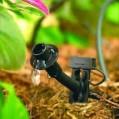 سیستم نوین آبیاری در بیش از ۴ هزارهکتار از باغ های نکا