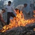 ۳۳۰ هکتار پوشش گیاهی میانکاله درآتش سوخت
