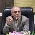 شهردار نکا ازبرگزاری دومین جشنواره تمشک جنگلی ایران درنکاخبر داد/ تصویر