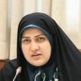 قاسمی طوسی از برگزاری نمایشگاه مد و لباس اسلامی و ایرانی در نمایشگاه بینالملی قائمشهر خبر داد