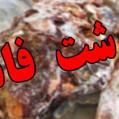 کشف ۴ تن گوشت فاسد در میاندورود